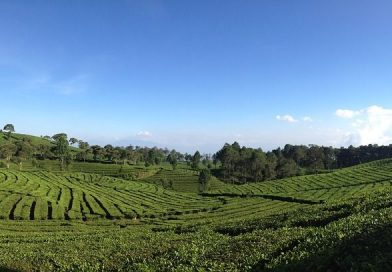 Bandung- All You Need to Know! — Buoyant Feet